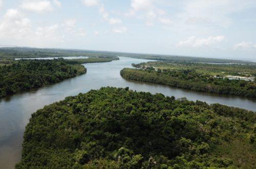 Article : Les aires protégées en Côte d'Ivoire, poumons de la biodiversité